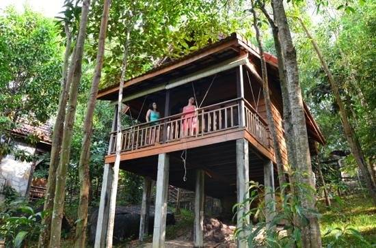Pagoda Rocks Boutique Guesthouse: charmant petit bungalow perdu dans la nature !