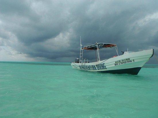 Buena Ventura Diving: El Cielo
