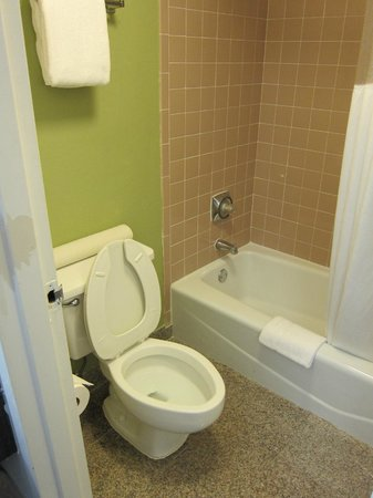 Ramada Temple Terrace/Tampa North: Comfortable bathroom
