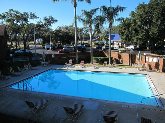 Ramada Temple Terrace/Tampa North: Pool area outside