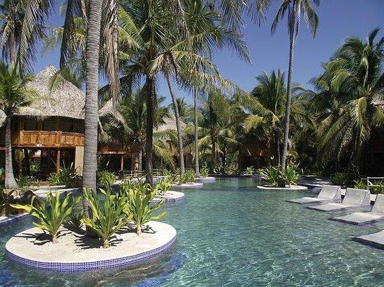 La piscina cuenta con sillas de madera para tomar el sol o for Piscina para tortugas