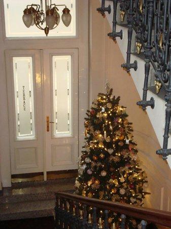 Hotel Liberty: meraviglioso albero di Natale!