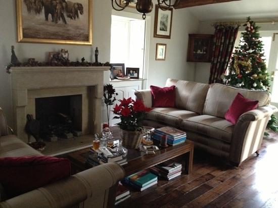 Cheskin House: living room