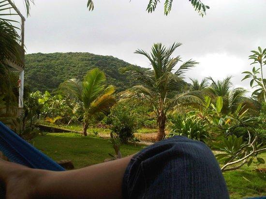 Posada Casa Las Trinitarias: Descansando...