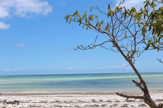 Samaki Lodge: spiaggia di uroa