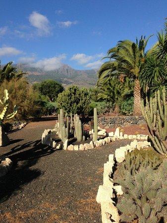 Hotel Rural Finca Salamanca : Botanischer Garten