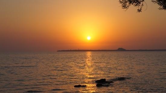 CLC Apollonium Spa & Beach: mooije zonsondergang hondenman