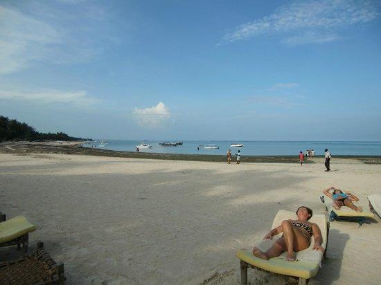 Dorado Cottage: Mare e alghe