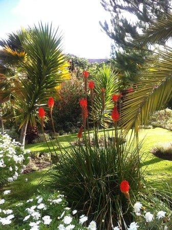Sol y Luna - Relais & Chateaux: Gardens