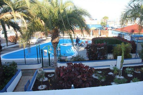 Puerto Colon Club : Pool