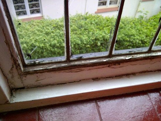 Tudor House Inn: Window ledge above bed
