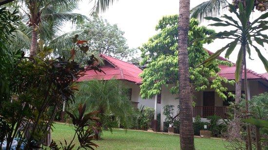 Fullmoon House Samui : The garden
