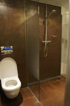 Park Plaza Vondelpark, Amsterdam: WC et douche