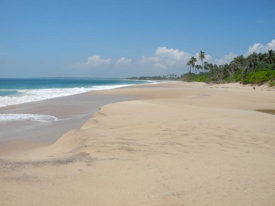 Buckingham Place: Rekawa beach (2 min walk from the hotel)