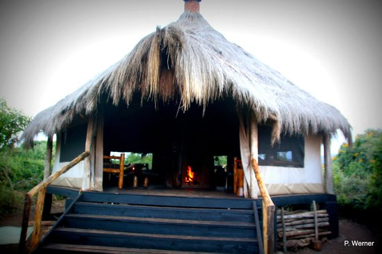 """Crater Forest Tented Camp: Die """"Bar"""""""