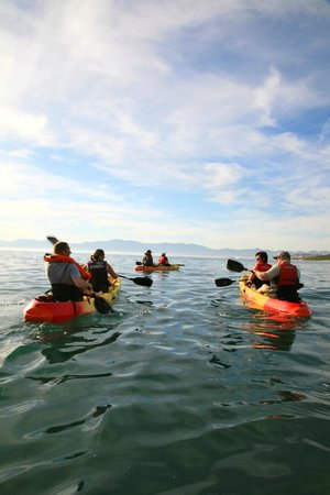De Kelders Private Villa: kayaking on walkerbay