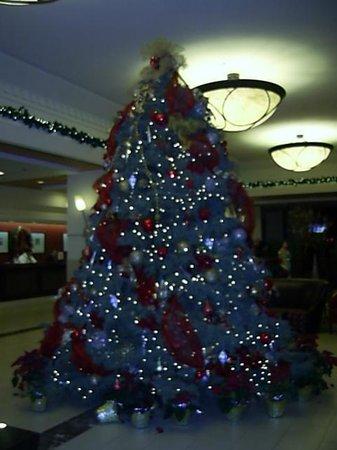 Doubletree by Hilton Anaheim - Orange County: ホテルロビー クリスマス時期のため、ツリーが飾られていた