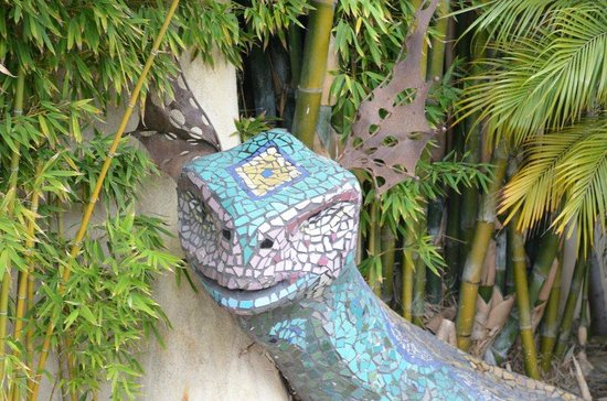 Blue Iguana Inn: Iguana by pool