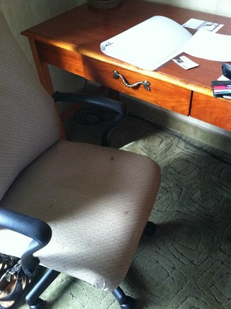 Hampton Inn Long Island - Brookhaven: Stained chair....