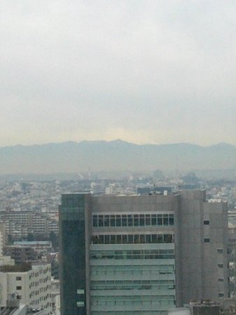 Shibuya Excel Hotel Tokyu: Mt. Fuji from 25th FL Breakfast buffet