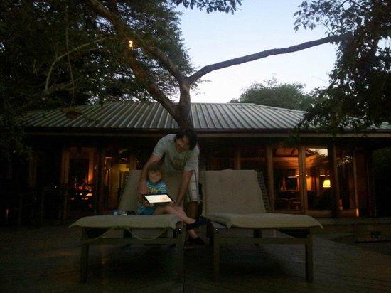 灌木柳系列酒店照片