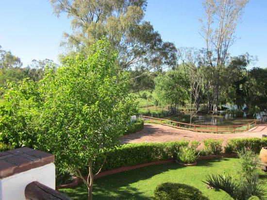 Zulu Nyala Country Manor: Blick von der Terrasse