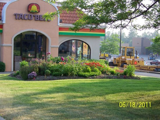 Taco Bell: Great landscape! - Great Landscape! - Picture Of Taco Bell, Rochester - TripAdvisor