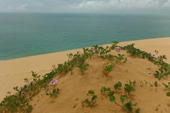 Azura Benguerra Island: Island Drive - View from Dune