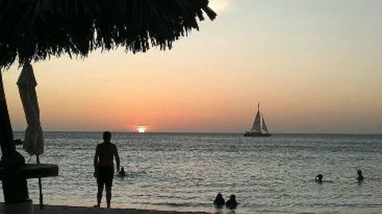 Divi Aruba Phoenix Beach Resort: Por do Sol