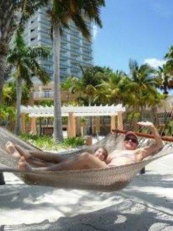 Divi Aruba Phoenix Beach Resort: Eita solzinho bom