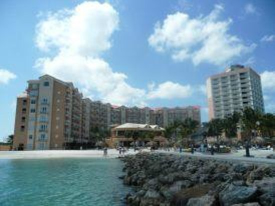 Divi Aruba Phoenix Beach Resort照片