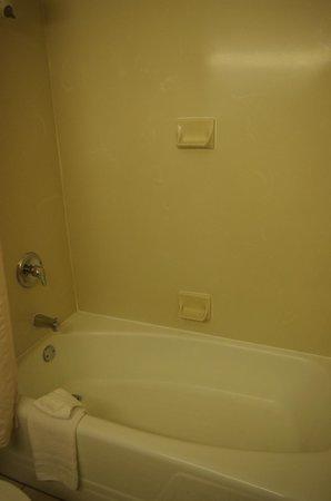 BEST WESTERN PLUS Chicago Hillside: Salle de bain avec baignoire