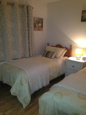 Meadowview B&B: Other bed in bedroom