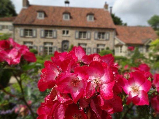 Loverlij : Geurige tuin