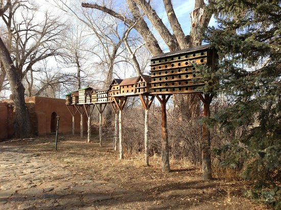 Mabel Dodge Luhan House: The pigeon colony near the front gate.