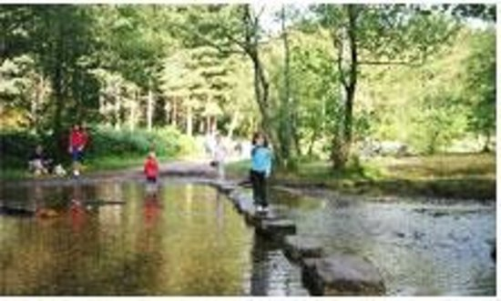 The Cottage Bed and Breakfast: Cannock Chase