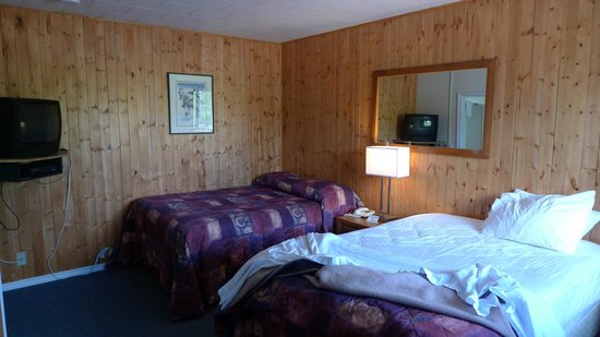 North Star Motel - Mayo: The room contains the beds, tv and cooking area