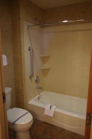 Best Western Plus Bryce Canyon Grand Hotel: baignoire et toilettes à part