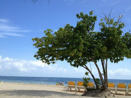 Iberostar Rose Hall Suites: beach