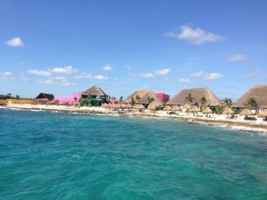 Senor Frogs Costa Maya: the bar was right on the beach