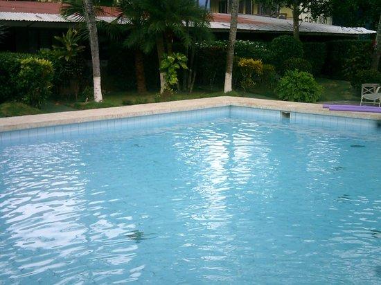 El Jardin: Pool & garden