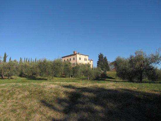 Relais Villa Grazianella - Fattoria del Cerro: La villa dal viale di accesso
