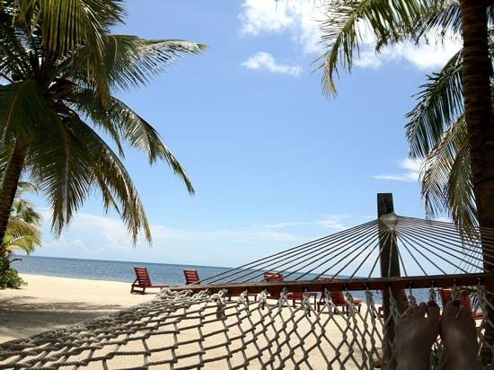 Singing Sands Inn : Relaxing in a hammock near our cabana.