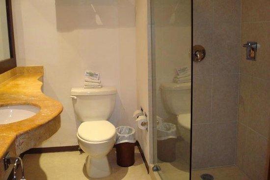 Ocean View Hotel: Shower room