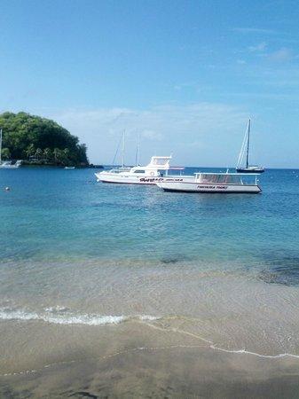 بارادايس بيتش هوتل: Fantasea Tour boats in front of the hotel 