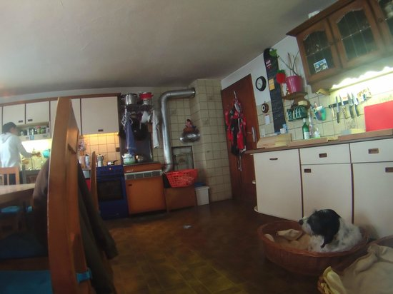 Stummerberg, Австрия: Cute dogs and kitchen/dining room