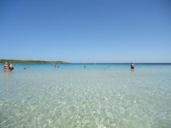 Protur Bonaire Aparthotel: sa coma beach - amazing!!