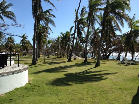 Lomani Island Resort: Grounds
