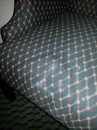 Quality Inn & Conference Center: Stained Chair