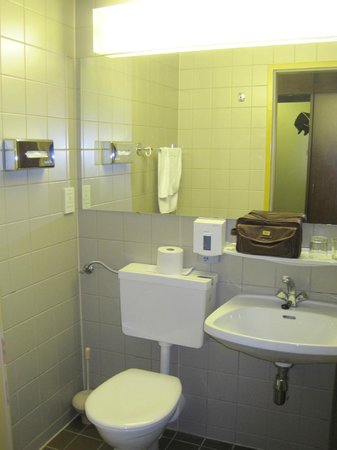 Hotel Hungaria City Center: Baño anticuado